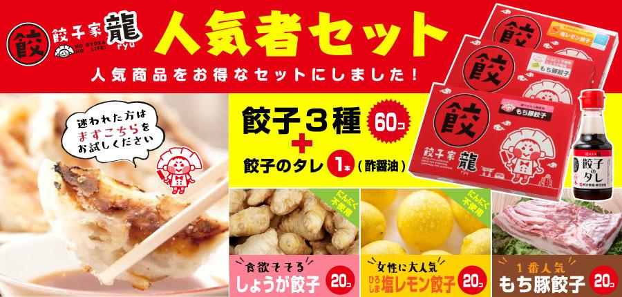 餃子家龍 人気者セット