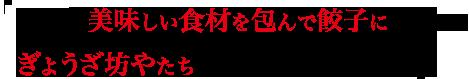 広島の美味しい食材を包んで餃子にするためぎょうざ坊やたちの広島の旅は続く・・・