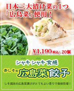 広島菜餃子