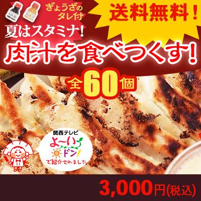 送料無料 夏はスタミナ!肉汁を食べつくす ご自宅用にもおすすめ 3,000円 肉汁餃子 20個入り 3箱 餃子のタレ2種
