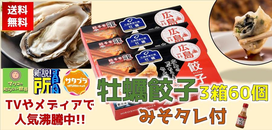 広島牡蠣餃子