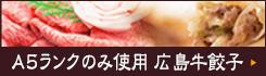 A5ランクのみ使用 広島牛餃子