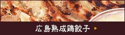 広島熟成鶏餃子